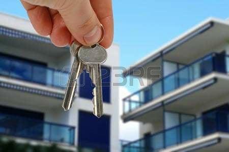 agence elfeth: location locale 100m2 à l'orangerie annaba contacté le 0663725684 ouedkniss