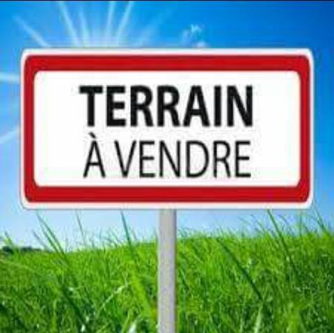 agence elfeth: vend terrain 580m2 à oued forcha annaba ouedkniss