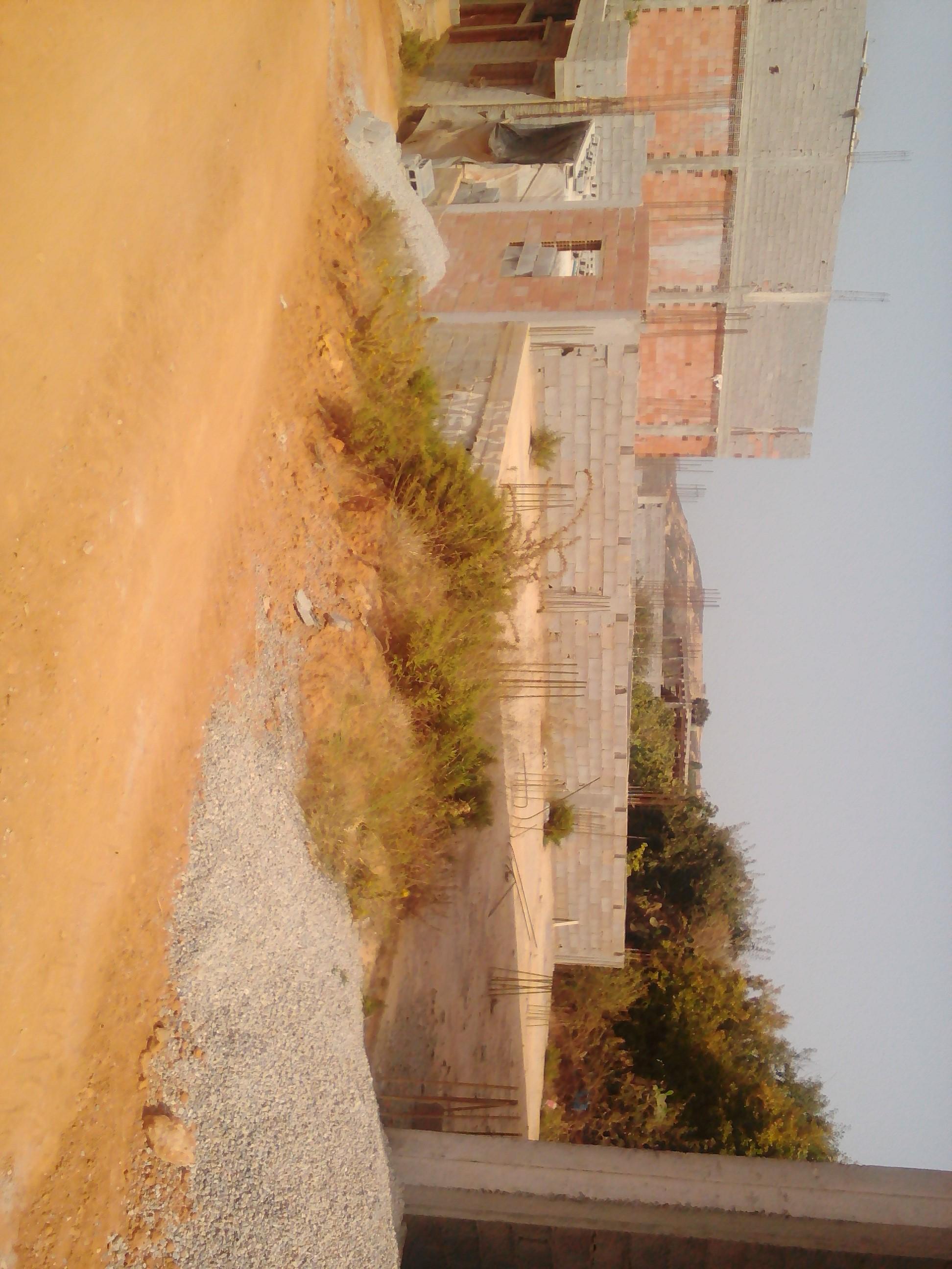 avendre un terrain avec plate forme a la wilaya de ain temoucent ouedkniss