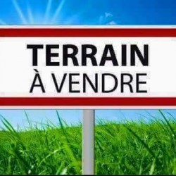 lot terrain a vendre a Oued ElDjemaa Relizane ouedkniss